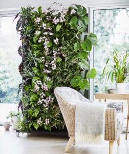 roby-baldan-Living-wall-Planters-Dobbies